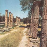 Олимпия. Руины палестры, с правой стороны деревья Альтиса. Фото: Анджей Дзевановский