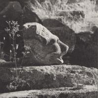 Олимпия. Храм Зевса. Голова, украшавшая водосток. Паросский мрамор, ок. 468-456 гг. до н.э. Фото: Анджей Дзевановский