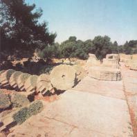 Олимпия. Храм Зевса, стилобат и барабаны разрушенной южной колоннады. Фото: Анджей Дзевановский
