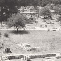 Олимпия. Метроон. В глубине руины храма Зевса, вид с северо-востока. Фото: Анджей Дзевановский