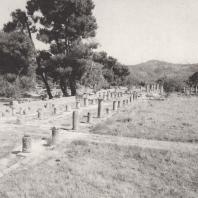 Олимпия. Гимнасий. В глубине колоннада палестры, с левой стороны низкая стена, окружающая Альтис. Фото: Анджей Дзевановский