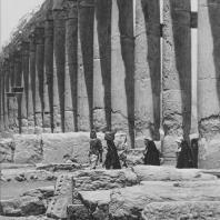 Пальмира. Часть Большой колоннады, вид с юга