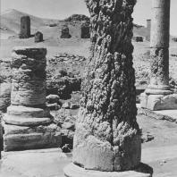Пальмира. Часть портика в западном квартале города, I век